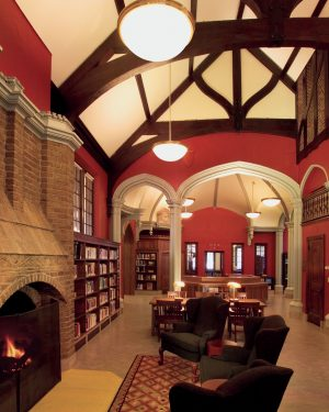 Mirage Pendant-Sumner Library