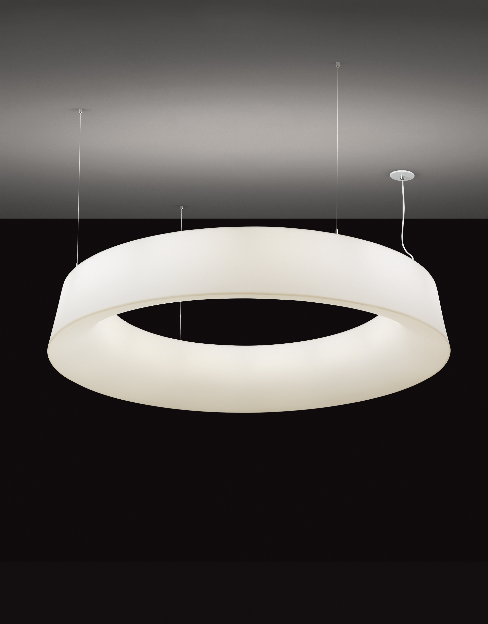 Loop™ Pendant - OCL Architectural Lighting
